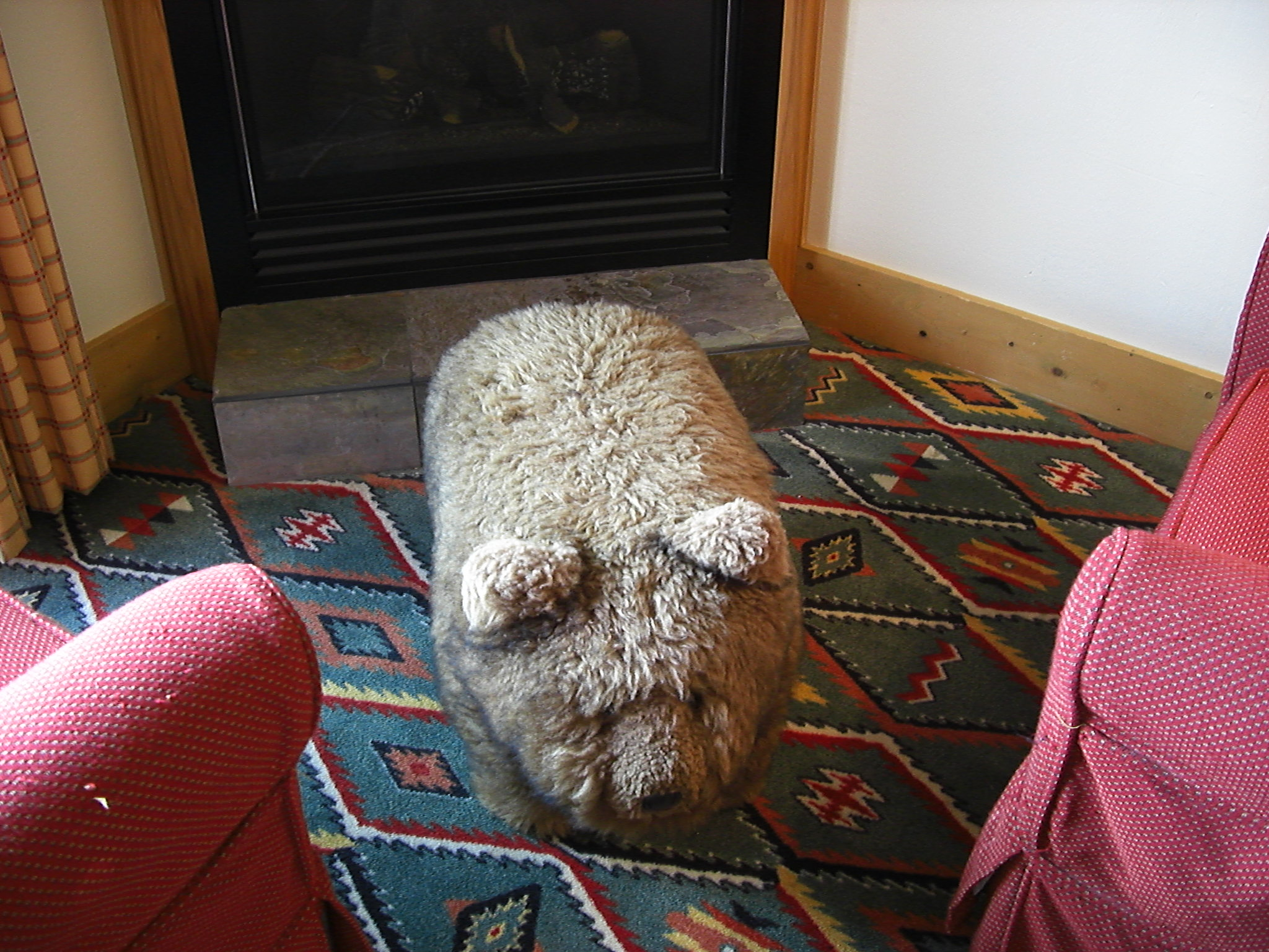 Edgewater Hotel Teddy Bear foot stool